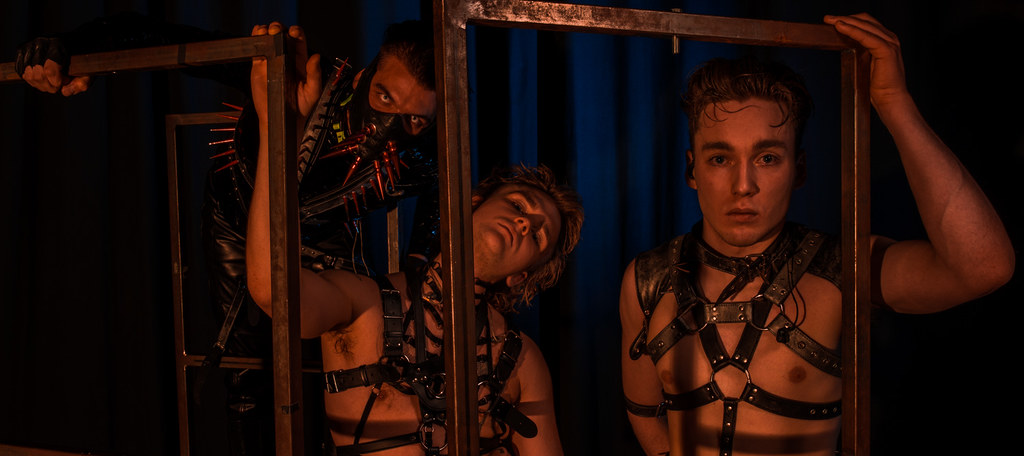 why hatari npoliticising eurovision was the right thing to do